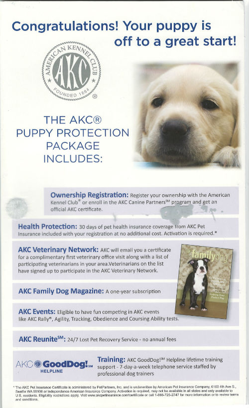 AKC Puppy Package